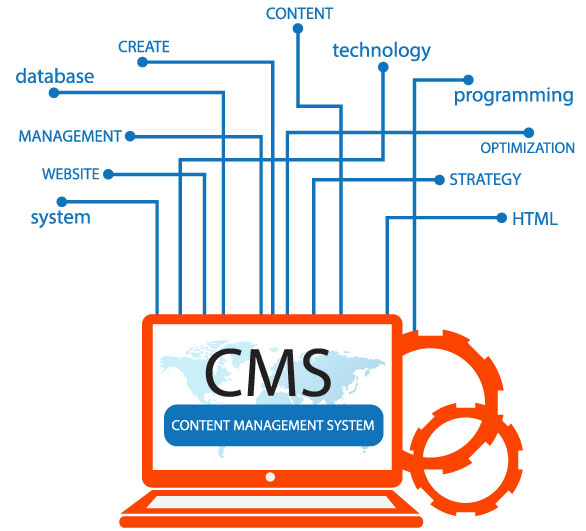 CMS Platform